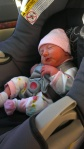In her carseat (about to be covered in blankets). Pretty sure this little outfit was a gift from her aunt.